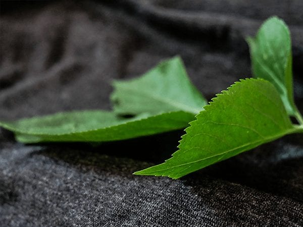 Darum kannst Du Dich auf das MADE IN GREEN by OEKO-TEX® Label verlassen