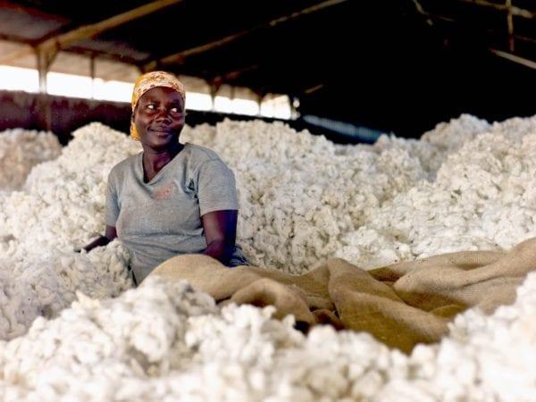 IVN zertifiziert Lager Baumwollentkörnung